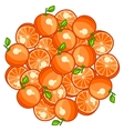 Background design with stylized fresh ripe oranges vector image vector image