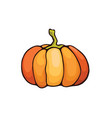 halloween pumpkin vegan food vector image