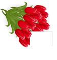 Happy women day tulips bouquet beautiful vector image