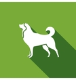 Husky dog icon vector image