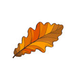 leaf autumn symbol isolated icon nature vector image vector image
