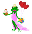 Happy Birthday frog vector image