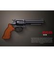 Background of Black gun metal Revolver vector image vector image