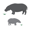 Big and little hippo vector image vector image