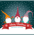 christmas card with funny gnomes vector image vector image
