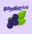 delicious blueberries cartoon social media banner vector image vector image
