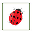 ladybird red icon vector image vector image