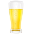 Lager light non alcoholic beer in glass vector image