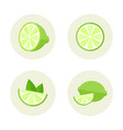 lime set of flat round icon vector image