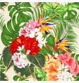 tropical flowers strelitzia and pink red yellow vector image vector image