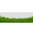 green grass border transparent background vector image vector image