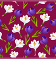 Spring crocus flower seamless pattern