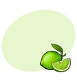 whole and quarter of unpeeled green lime sketch vector image vector image