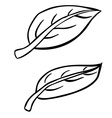 black and white freehand drawn cartoon leaves vector image vector image