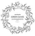 circle wreath decorated berries sketch composition vector image