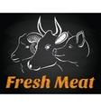 fresh meat animals chalkboard sign emblem vector image
