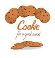 oat cookies with chocolate chips vector image