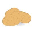 potatoes isolated vector image