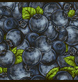 seamless background of blueberries vector image vector image