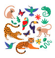 tropical jungle animals and exotic birds vector image