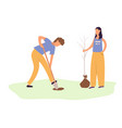 a young man and woman plant a tree gardening vector image