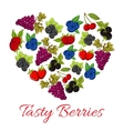 Berries fruits in shape of heart vector image vector image