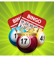 bingo king and cards vector image