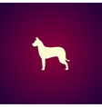 dog icon Modern design flat style vector image vector image