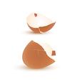 Eggshell vector image