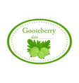 green gooseberry label design isolated o vector image