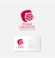 red pomegranate grains logo card vector image vector image