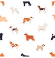 seamless pattern with dogs of various breeds on vector image vector image