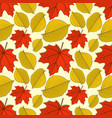seamless pattern with maple and elm autumn leaves vector image