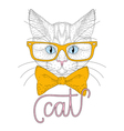 cute cat boy portrait with hipster glasses vector image vector image