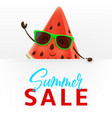 cute watermelon character with white signboard vector image vector image