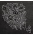 Decorative ornamental peacock chalkboard vector image vector image
