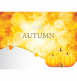autumnal leaf of maple background vector image vector image