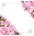 background with pink roses flowers and vector image