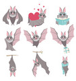 collection of funny gray bats cute creature vector image