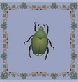 japanese beetle color in medieval flo vector image vector image