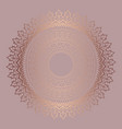 rose gold mandala background vector image vector image