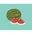water melon single isolated with blue background vector image